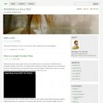 MistyLook Screenshot